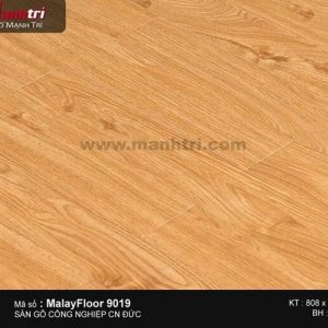 Sàn gỗ Malay Floor 9019