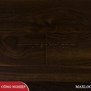 maxlock-ms11