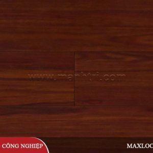 maxlock-ms50