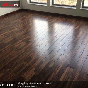 chiu liu 450
