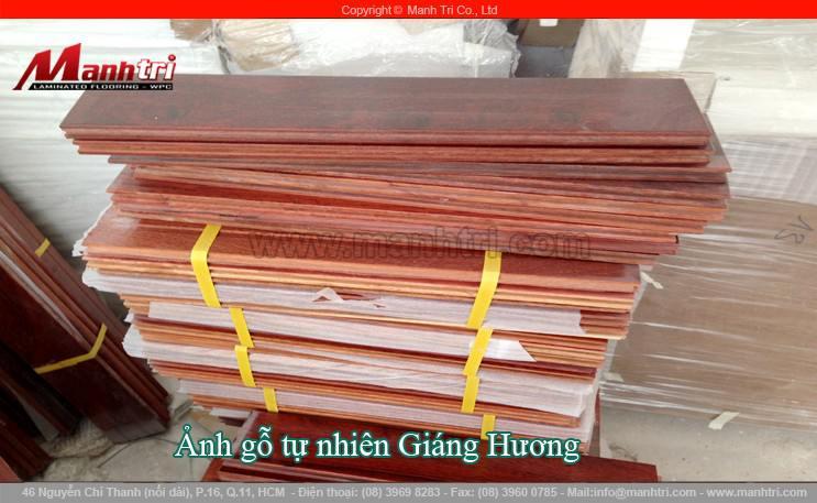 san-go-tu-nhien-giang-huong-hinh-09