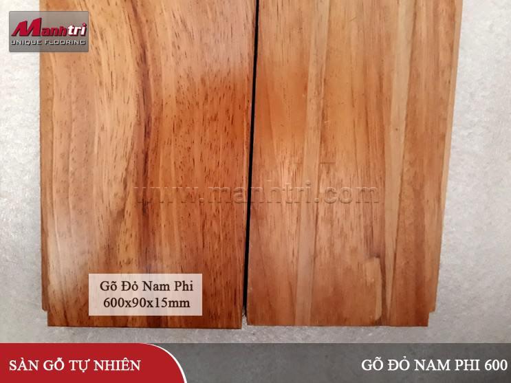 san-go-go-do-nam-phi-600-hinh-09