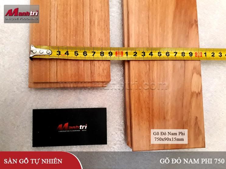san-go-go-do-nam-phi-750-hinh-04