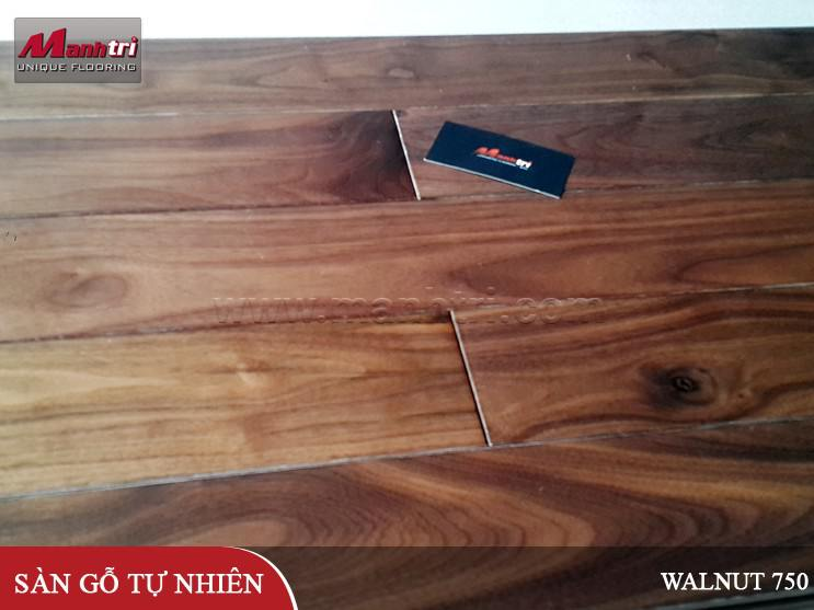 san-go-walnut-750-hinh-01