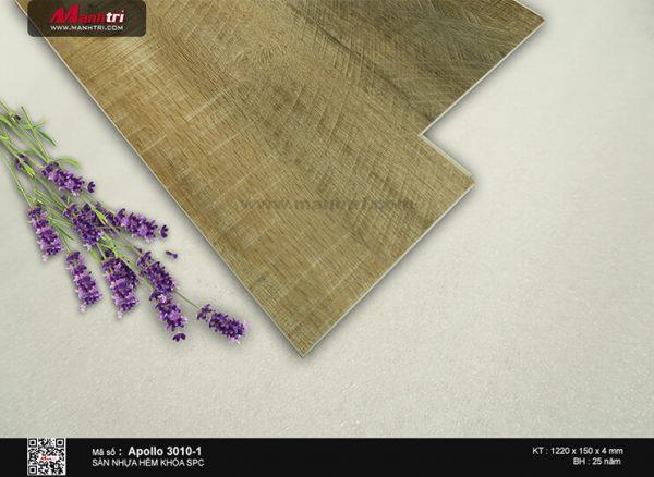 Sàn nhựa Apollo 3010-1