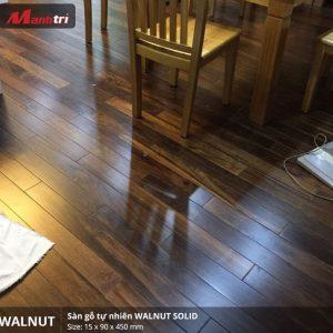walnut 450 2
