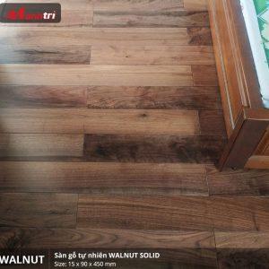 walnut 450 3