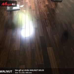 walnut 900 3