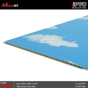 tấm nhựa iPVC 4027-b