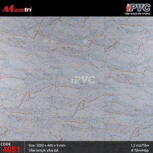 iPVC-4051