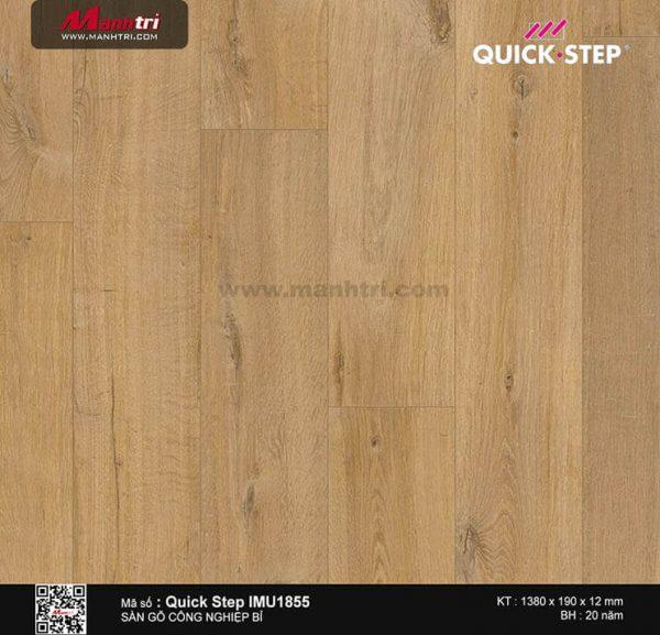 san-go-cong-nghiep-quickstep-IMU-1855