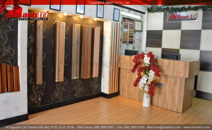 Một trong những Showroom của công ty Mạnh Trí - 46 Nguyễn Chí Thanh ( nối dài), phường 16, quận 11