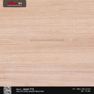janmi sàn gỗ T13