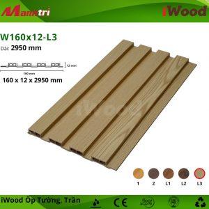 iWood W160x12-L3 hình 1