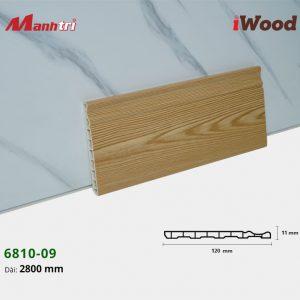 iwood-6810-09