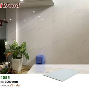 thi công iwood nano 4055-2