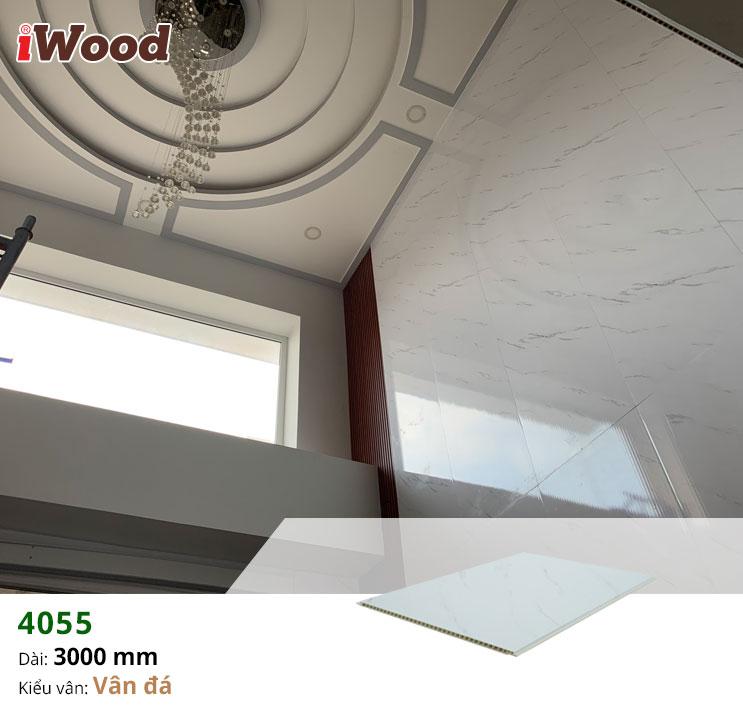 thi công iwood nano 4055-3