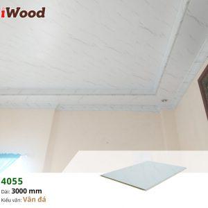 thi công iwood nano 4055-6