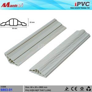 iPVC 6803-01 hình 2