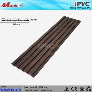 iPVC W160x10-37a hình 1