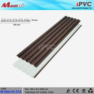 iPVC W160x10-37a hình 2