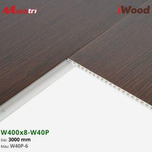 iWood W40P-6 hình 3