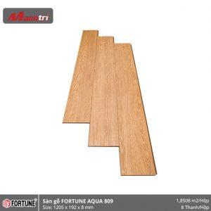 Sàn gỗ Fortune 809 hình 1