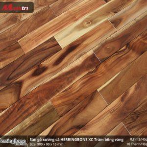 sàn gỗ xương cá herringbone XC Tràm Bông Vàng