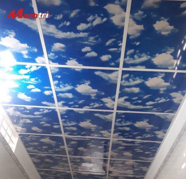 tấm ốp tường hoa văn PVC 09 hình 2