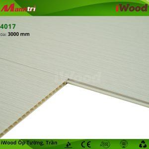 iWood 4017 hình 5