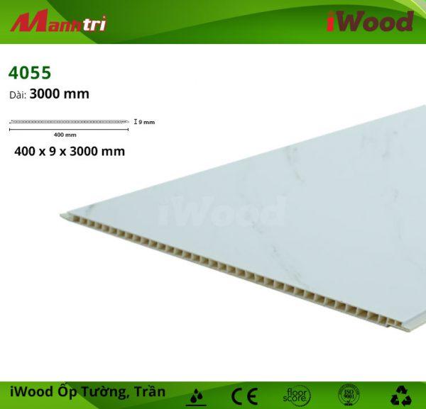 iWood 4055 hình 5