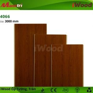 iWood 4066 hình 3