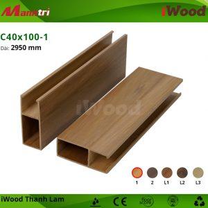iWood C40x100-1 hình 2