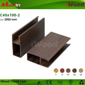 iWood C40x100-2 hình 2