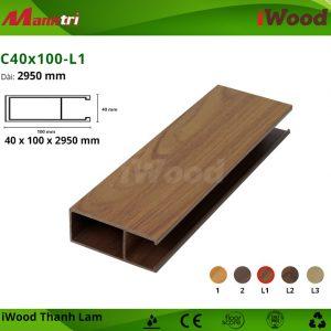 iWood C40x100-L1 hình 1