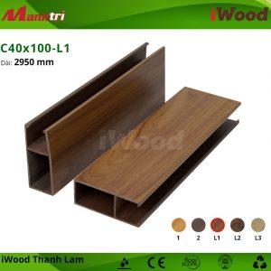 iWood C40x100-L1 hình 2