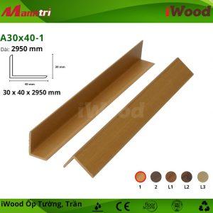 A30x40-1 hình 1