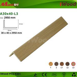 A30x40-L3 hình 1
