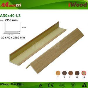 A30x40-L3 hình 2