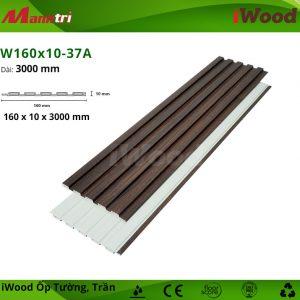 iWood W160x10-37A hình 2