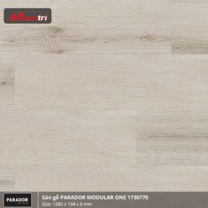 Sàn gỗ parador Modular one 1730770 hình 1