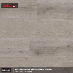 Sàn gỗ parador Modular one 1730771 hình 1
