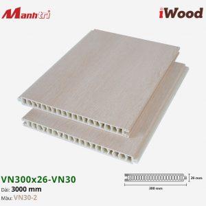 iWood VN30-2 hình 2