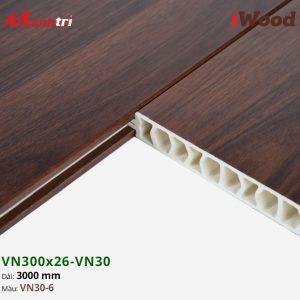 iWood VN30-6 hình 3
