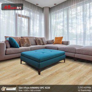 san-nhua-aimaruspc-4220-hinh-2