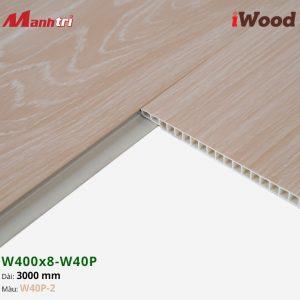 iWood W40P-2 hình 3