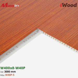 iWood W40P-5 hình 3